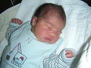 Do rodiny Věry a Róberta Ragančíka z Prahy přibyl 10. listopadu nový člen. Je to kluk, jmenuje se Robert a po narození vážil 3,65 kg a měřil 51 cm. Kočárek s bratříčkem bude vozit sestřička Liliana (5).