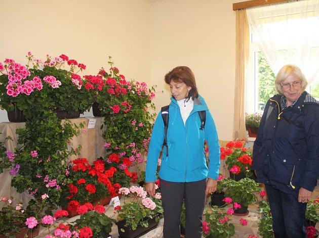 Členové zahrádkářské organizace v Litni uspořádali v sobotu výstavu svých výpěstků.