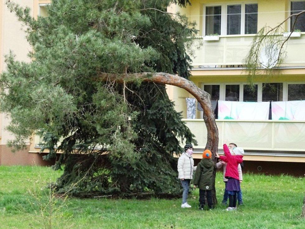 Den Země v berounské družině.