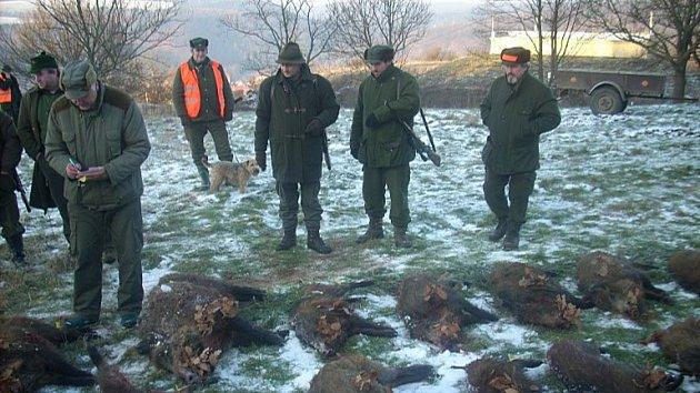 Členové Mysliveckého spolku Habrový potok každoročně postřílí desítky divokých prasat.