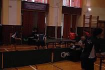 Stolní tenis Králův Dvůr