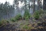Požár lesa u Úhonic.