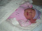 SYNOVI Ríšovi (15 měs.) pořídili rodiče Michaela Dvořáčková a Martin Škaryd sestřičku Adélu. Adélka Škarydová se narodila 14. ledna 2018, vážila 3,21 kg a měřila 49 cm. Rodina má domov v Příbrami.