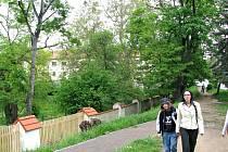 Z Panské zahrady v Hořovicích vznikne park v jednotném stylu