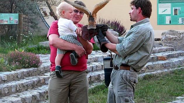 Zkušený sokolník zapojil do cvičení s dravými ptáky malé i velké návštěvníky.