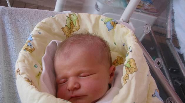 Dcera Ema Škarýdová se v úterý narodila v hořovické nemocnici Pavlu Škarýdovi a Petře Csingerové ze Žatce. Holčička vážila 3,45 kilogramu a měřila 49 centimetrů.