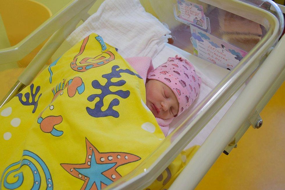 Sofie Vilímovská se Ludmile Filipové a Jakubu Vilímovskému narodila v benešovské nemocnici 16. června v 18.43 hodin, vážila 2680 gramů. Rodina bydlí ve Vlašimi.