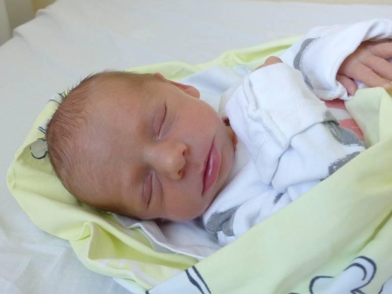 Eva Novotná se narodila 2. června 2021 v kolínské porodnici s váhou 2050 g. V Choťánkách ji přivítala sestřička Janička (4) a rodiče Petra a Tomáš.
