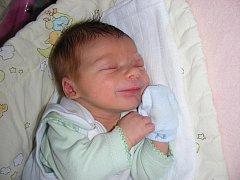 Další harleyář, Dominik Belda, se narodil v pátek 18. listopadu 47 minut po 1 hodině mamince Květě Rakoczyové a tatínkovi Davidovi Beldovi ze Rpet. Domík vážil po příchodu na svět 3,41 kg a měřil rovných 50 cm.
