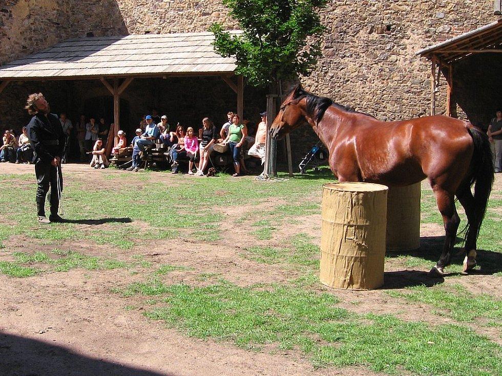 Koňský Dvorec na hradě Točník.