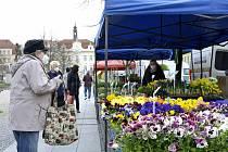 Farmářské trhy v Berouně.