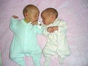 DVOJNÁSOBNOU radost mají rodiče Lenka Hauptová a Miroslav Hriňák z Berouna. Dne 8. září 2017 se jim narodila krásná dvojčátka, Vojtěch a Emma. Vojtíšek se narodil první a vážil pěkných 3,50 kg. Emmička se mohla po narození pochlubit váhou 2,70 kg.