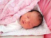 ANNA Jana Sudíková se narodila 31. října 2017 v 5.48 hodin manželům Janě a Milanovi z Měňan. Anička vážila po narození pěkných 3,84 kg a měřila 50 cm. Na narození Aničky se moc těšili sestřička Eliška (16 let) a bráška Míša (7 let). Foto: Rodina