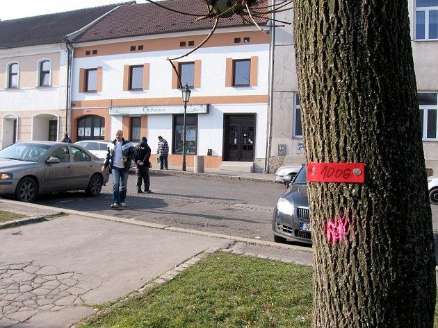 Červené značky na stromech v Hořovicích jsou součástí  příprav digitalizace zeleně