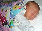 MANŽELŮM Lucii a Jiřímu Hnízdilovým z Berouna, se 4. května 2017 narodil druhý syn a dostal jméno Michal. Chlapečkovy porodní míry byly 45 cm a 2,43 kg. Míša bude vyrůstat s bráškou Vojtíškem (1,5 roku).