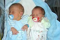 DVOJNÁSOBNOU radost mají manželé Iva a Srtanislav z Praskoles, kterým se v tento den narodila dvojčátka Alois a Antonín. Lojzík vážil po porodu 3,15 kg a Toník 2,75 kg. Z dvojčátek se radují sourozenci Lada a Stanislav.