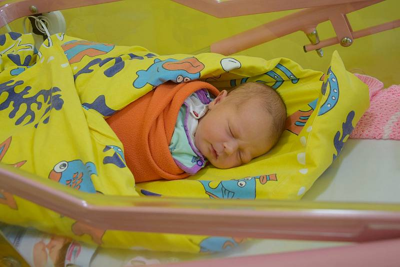 Zuzana Havlíčková se manželům Dianě a Robertovi narodila v benešovské nemocnici 4. června 2021 v 14.32 hodin, vážila 3280 gramů. Rodina bydlí ve Stříbrné Skalici.
