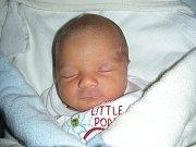 Tatínek Jiří Vyštejn byl u narození syna Dominika, kterého přivedla na svět maminka Liana Kruftová 10. listopadu. Dominiček vážil po porodu 2,85 kg a měřil 46 cm. Rodiče si prvorozeného syna odvezou domů do Hořovic.