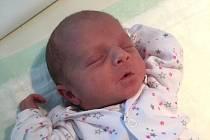 Barbora Vacková, Třtí. Narodila se 14. března 2020 v hořovické porodnici. Rodiče jsou Hana a Miloš, tříletá sestra se jmenuje Hanička.