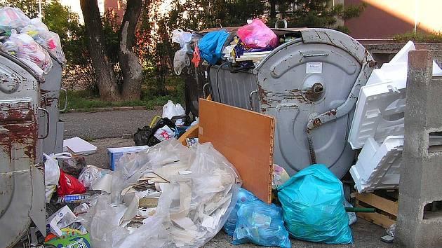 Kontejnery v Tovární ulici v Berouně v neděli doslova praskaly ve švech. Kupy odpadků, mezi kterými hladově slídil i zatoulaný pes, vytvářely kolem kontejnerů nevábné prostředí.