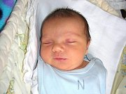 Sebastian Buzzi spatřil prvně světlo světa 18. dubna 2014 a jeho porodní míra byla 3,68 kg. Maminka Jana a tatínek Alan si prvorozeného synka odvezou z porodnice domů do Králova Dvora.