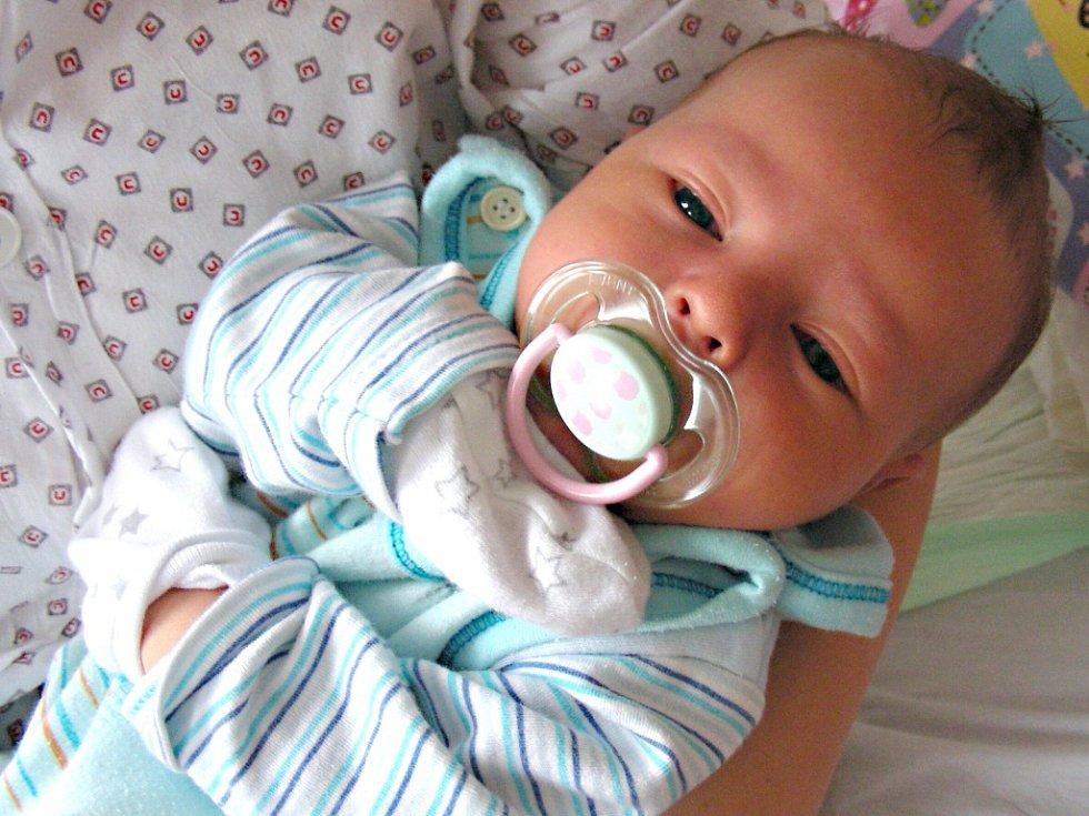 K ČTYŘLETÉ Terezce z Komárova přibyl 9. března 2018 bráška Dominik. Dominiček Selichar vážil po porodu 3,71 kg a měřil 51 cm.