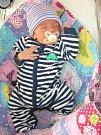 PRVNÍ miminko, syn Dominik Kabrle se narodil 17. listopadu 2017 Monice Kabrlové a Jaroslavovi Janouškovi. Novopečená rodinka má domov v Praze.