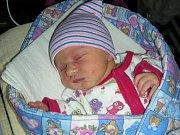 HOLČIČKA Andrea Ecaterina Vitel z Králova Dvora se narodila 31. prosince 2017 a vážila 3,06 kg. Ze sestřičky se raduje bráška Ciolea Idam Grigorie (6).