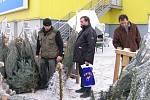 Vánoční strom seženou lidé v Beruně i 24. prosince