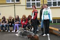 Školáci se rozhodli pomoci psímu útulku