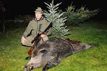 Divoká prasata a srny jsou častou příčinou dopravních nehod.