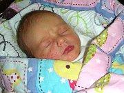 PRVNÍ miminko, syn Adam, se narodil 8. prosince 2017 rodičům Pavlíně Lavičkové a Michalovi Tomečkovi z Hořovic. Adámkovi sestřičky na porodním sále navážily 3,36 kg a naměřily 52 cm.