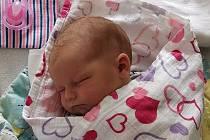 Adélka Novotná se narodila 19. června ve 2:27 v hořovické porodnici. Po narození vážila 3540 g a měřila 49 cm. S rodiči Evou a Jakubem Novotnými a bráškou Daníkem (3) bude bydlet v Tetíně.