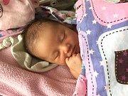 VELKOU radost mají Alena Kubáňová a Van Dang Manh, kterým se v pondělí 2. října 2017 narodila holčička a rodiče jí dali jméno Emily. Emily Dang přišla na svět s váhou 3,53 kg a mírou 51 cm. Novopečená rodinka má domov v Roblíně. Foto: Rodina