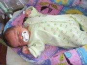 DO HASIČSKÉ rodiny Lucie a Martina Batíkových přibyl 11. května 2017 nový člen. Je to kluk a dostal jméno Matouš. Chlapečkovy porodní míry byly 3,77 kg a 51 cm. Rodiče si prvorozeného Matouška odvezli do Hlásné Třebaně.