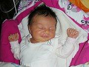 Prvorozenou dceru Viktorii přivedli společně na svět Michaela Faloutová a David Minaříček. Viktorka se narodila 4. ledna 2019, vážila 3,35 kg a měřila 47 cm. Novopečená rodina má domov v Jinočanech.