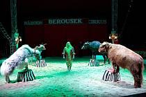 Národní cirkus Original Berousek