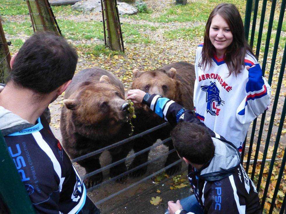 Berounští hokejisté krmili medvědy.