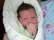 JAN Kačírek prvně pohlédl na svět 10. března 2017, vážil pěkných 3,89 kg a měřil 51 cm. Maminka Bohuslava Motlová a tatínek Jiří Kačírek si prvorozeného syna Honzíka odvezli z porodnice domů do Oseku.