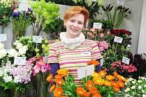 Výstava orchidejí v zahradním centru Lisý