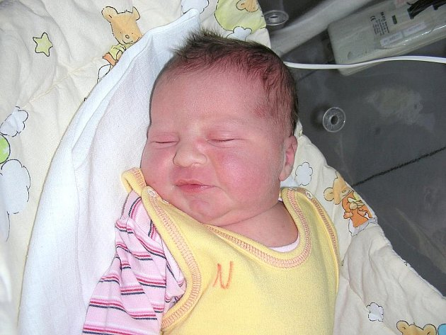 Amálka Sokolová se narodila 15. 11. s krásnou váhou 3,86 kg a mírou 52 cm. Manželé Andrea a Marek si svoji dcerku odvezou domů do Nové Vsi pod Pleší, kde se na sestřičku těší Eliška (3,5), která v den narození byla úplně stejná jako Amálka.
