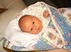 Šťastným dnem je 7. únor 2014 pro rodiče Ditu Břízovou a Tomáše Mikutu z Hýskova, kterým se v tento den narodil druhý syn a rodiče mu dali jméno Dominik. Chlapeček vážil po porodu 3,75 kg a měřil 50 cm. Dominika bude dětským světem provázet bráška Tobiáše