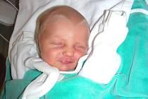 Datum 11. února 2015 má v rodném listě zapsané Karolína Lébrová, prvorozené miminko rodičů Radany Fischerové a Michala Lébra z Králova Dvora – Popovic. Karolínce sestřičky na porodním sále navážily 3,05 kg a naměřily 46 cm.