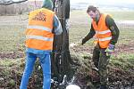 Sdružení Arnika obsadilo stromořadí mezi Skřiplí a Hostomicemi
