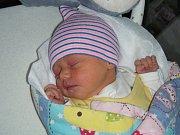 Manželům Lucii a Alešovi Ortovým z Prahy – Velké Chuchle se v pátek 4. ledna 2019 narodilo v hořovické porodnici první dítko, dcera Johana. Johanka, které vybral jméno tatínek, přišla na svět s váhou 3,50 kg.