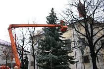 Instalace osvětlení na strom na hořovickém náměstí