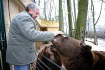 Medvědí bratři oslavili již osmé narozeniny