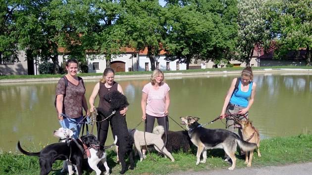 Poznávací výlet se psy se koná v sobotu 21. září