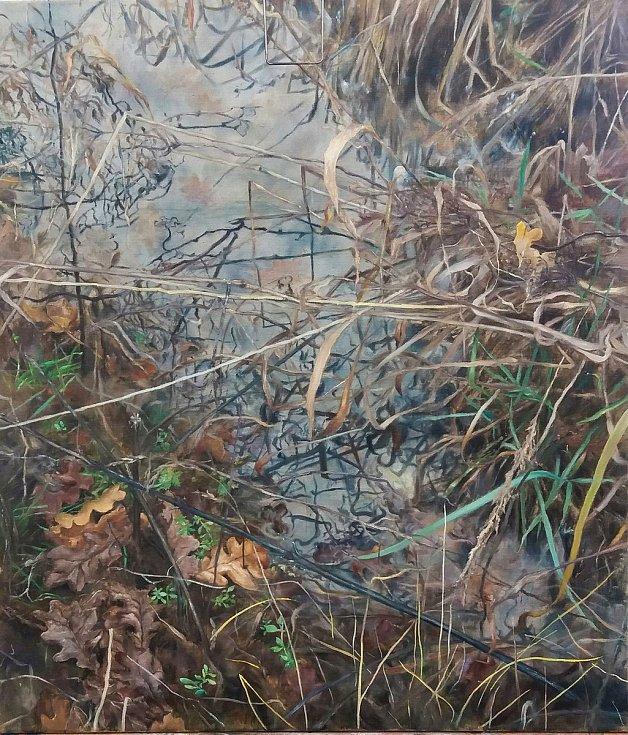 1. místo: Louže v trávě.  Autor: Marie Vydrová Drobníková.