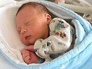 K DCERCE Elince (1,5) si manželé Monika a Petr Hnízdilovi z Cerhovic pořídili druhé dítko, syna Petra. Petřík se narodil 12. srpna 2017, vážil 3,11 kg a měřil rovných 50 cm.
